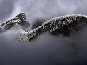 Robert Lozen - EARLY MORNING SNOW