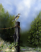 Meadowlark Paintings - Early Morning Song by Russell Bentley