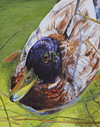 Helen Shideler - Early SPring in the Duck...