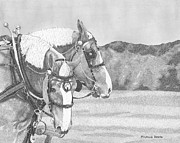 Percheron Drawings Posters - Early To Rise Poster by Michelle Hogan