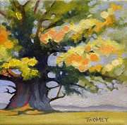 Catherine White Painting Metal Prints - Earlysville Virginia Ancient White Oak Metal Print by Catherine Twomey