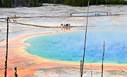 Jamie Pham - Earth Rainbow - Overhead view of Grand Prismatic Spring in Yellowstone National Park.