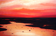Pink Dawn Prints - Earth Swamp Print by Paul  Meijering