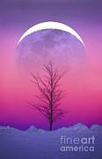 Larry Landolfi - Earthshine