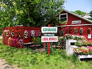 Farmstand Photo Metal Prints - East End Farmstand Metal Print by Ed Weidman