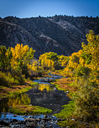 Mitch Shindelbower - East Fork Carson River