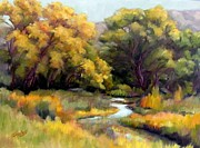 Sandy Farley - East Fork Gila River