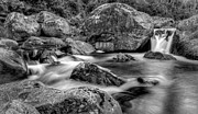 East Village Photos - East Kiewa River by Mark Lucey