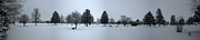 Framed Winter Snow Photograph Posters - East Lawn Cemetery Winter Panorama Poster by Thomas Woolworth