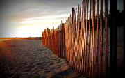 Anne Babineau Metal Prints - East Matunuck sunset Metal Print by Anne Babineau