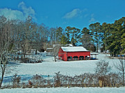 Regina McLeroy - East TN Snow and RED