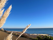 Art Photography Photos - Eastbourne coast by Art Photography