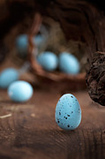 White Wicker Posters - Easter blue eggs Poster by Nikolina Petolas