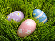 Grass Photo Framed Prints - Easter Eggs in the grass Framed Print by Edward Fielding