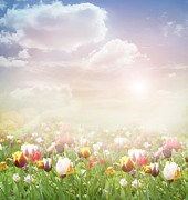 Mythja Posters - Easter Spring  background Poster by Mythja  Photography