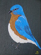 Bluebird Painting Originals - Eastern Bluebird by Jeannette Brown