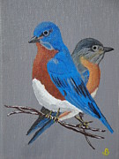 Bluebird Painting Originals - Eastern Bluebirds by Jeannette Brown