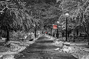 Mark Kiver Prints - Eastern Path with Red Print by Mark Kiver
