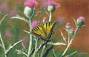 Jeremiah Epperson - Eastern Tiger Swallowtail