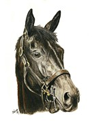 Thoroughbred Horse Art - Eblouissante by Pat DeLong