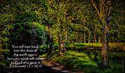 Dave Bosse - Ecclesiastes 12 - 7