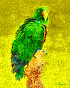 Solomon Paintings - Eclectus parrot by George Rossidis