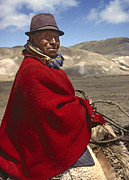 Poncho Framed Prints - Ecuadorian Sheep Herder - Altiplano Framed Print by Craig Lovell