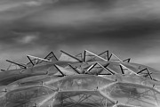 Architectural Abstract Posters - Eden Project Roof 2 Black and White Poster by Chris Thaxter