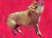 Edgar Allen Pig Print by Carl Rolfe