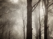 Monochrome Prints - Edge of Eternity Print by Amy Weiss