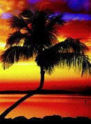 Tropical Landscapes Prints - EDGE of NIGHT Print by Karen Wiles