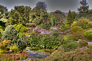 Rod Jones - Edinburgh Botanical...