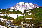 Nature Prints - Edith Creek near Mount Rainier Print by David Patterson