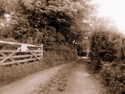 Outside Pictures Posters - Eerie Lane Monmouth Wales Poster by Andrew Read