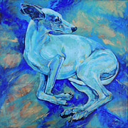 Whippet Originals - Effects of gravity-2 by Derrick Higgins