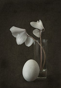 Cyclamen Photos - Egg With Two Cyclamen by Jim Larimer