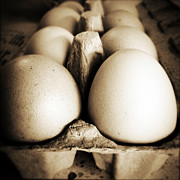 Eggshell Prints - Eggs Print by Les Cunliffe