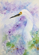 Waterfowl Paintings - Egret Charm by Bette Orr