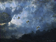 Egret Digital Art Posters - Egrets Morning Fly Poster by J Larry Walker
