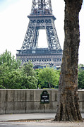 Dany  Lison - Eiffel Tower avenue de...