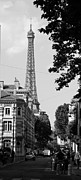 Vintage Eiffel Tower Metal Prints - Eiffel Tower Black and White 4 Metal Print by Andrew Fare