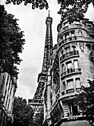 France Photos - Eiffel Tower / Paris by Barry O Carroll
