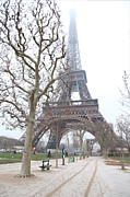 Destinations Prints - Eiffel Tower - Paris France - 011315 Print by DC Photographer