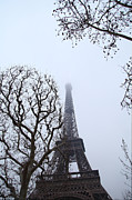 Eifelturm Prints - Eiffel Tower - Paris France - 011318 Print by DC Photographer