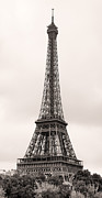 Paris Metal Prints - Eiffel Tower Paris Metal Print by Phill Petrovic