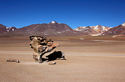 Bolivia - El Arbol de Piedra Bolivia by James Brunker