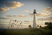Florida House Photo Originals - El Farito by Shahiz Almonte