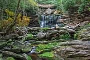 Mary Almond - Elakala Falls
