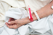 Armband Photos - Elderly woman wearing medical arm bands by Joe Belanger