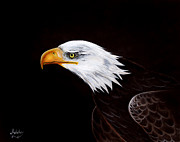 American Bald Eagle Painting Prints - Eleanor the Eagle Print by Adele Moscaritolo